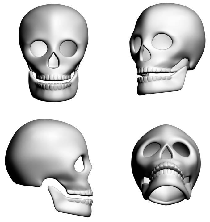 Final Skull Rendering