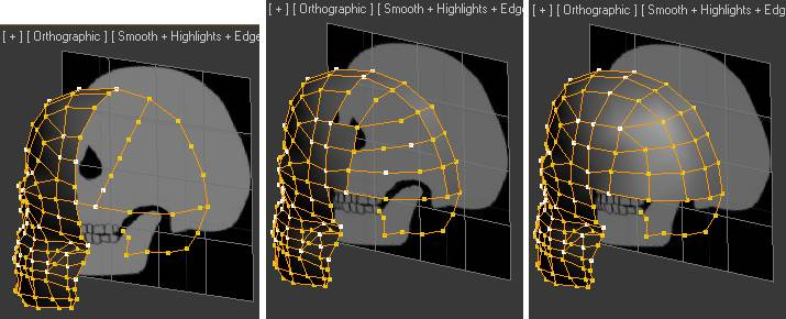 Build the Spline Cage on the back of the Skull