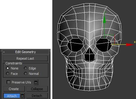 Attach both skull halves