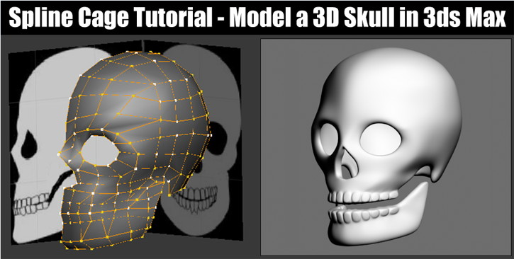 Spline Model a Skull in 3ds Max